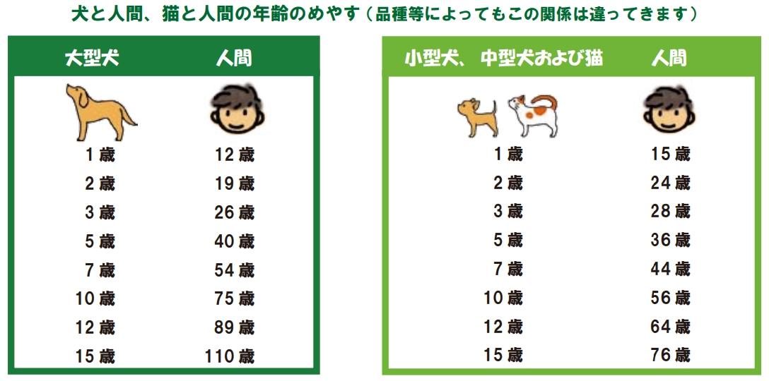 犬と人間、猫と人間の年齢のめやす